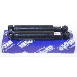 Pair of front shocks