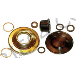 Membrane Kit + cup head fuel filter Purflux